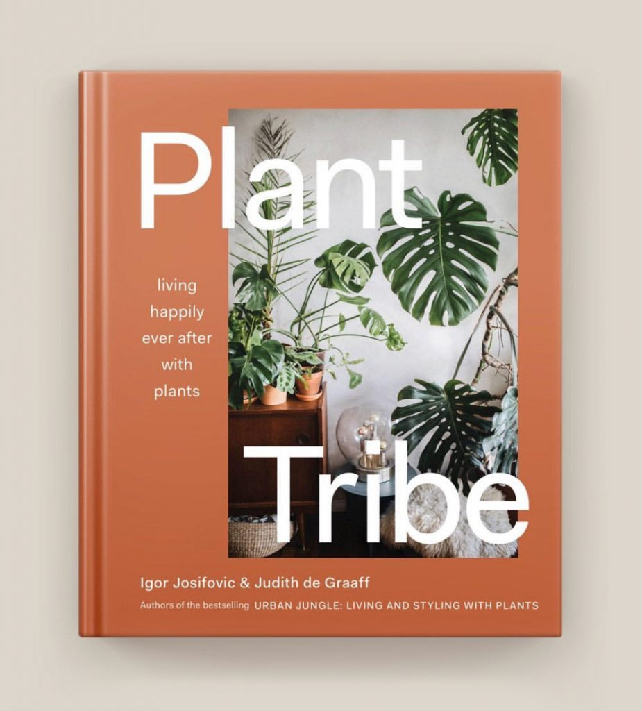 Urban Jungle Bloggers - Plant Tribe, Living Happily Ever After with Plants